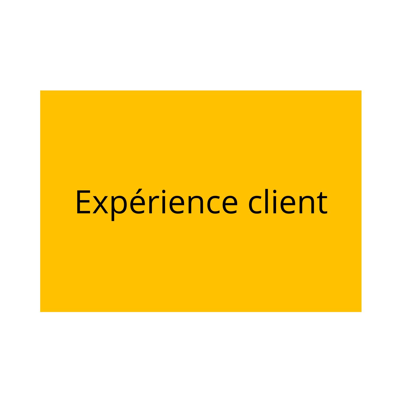 experience-client-reseaux-sociaux